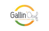 Gallin'Oeuf